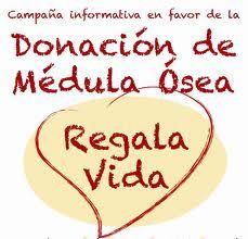 donacion-de-medula-321xXx80